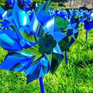 pinwheel Yeny Image